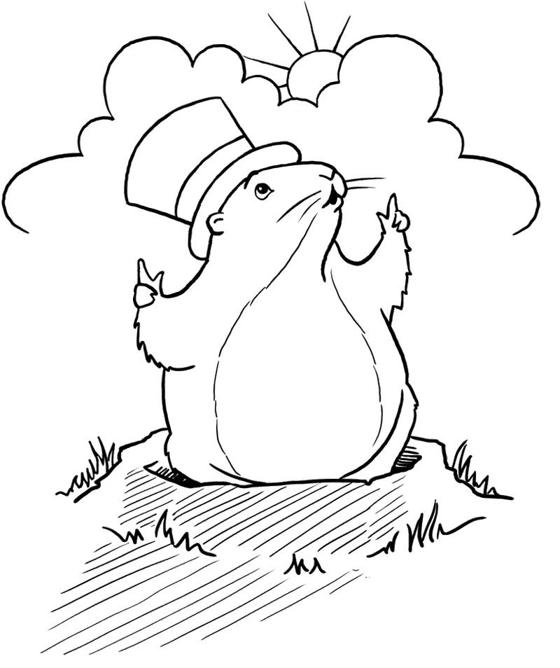 1000 images about groundhog day coloring page on pinterest