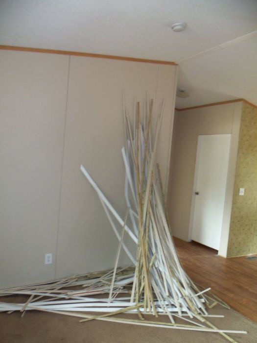 Removed All The Strips Off Walls And Around Doors Blinds That Were Mounted Outside Remodeling Mobile Homesmobile