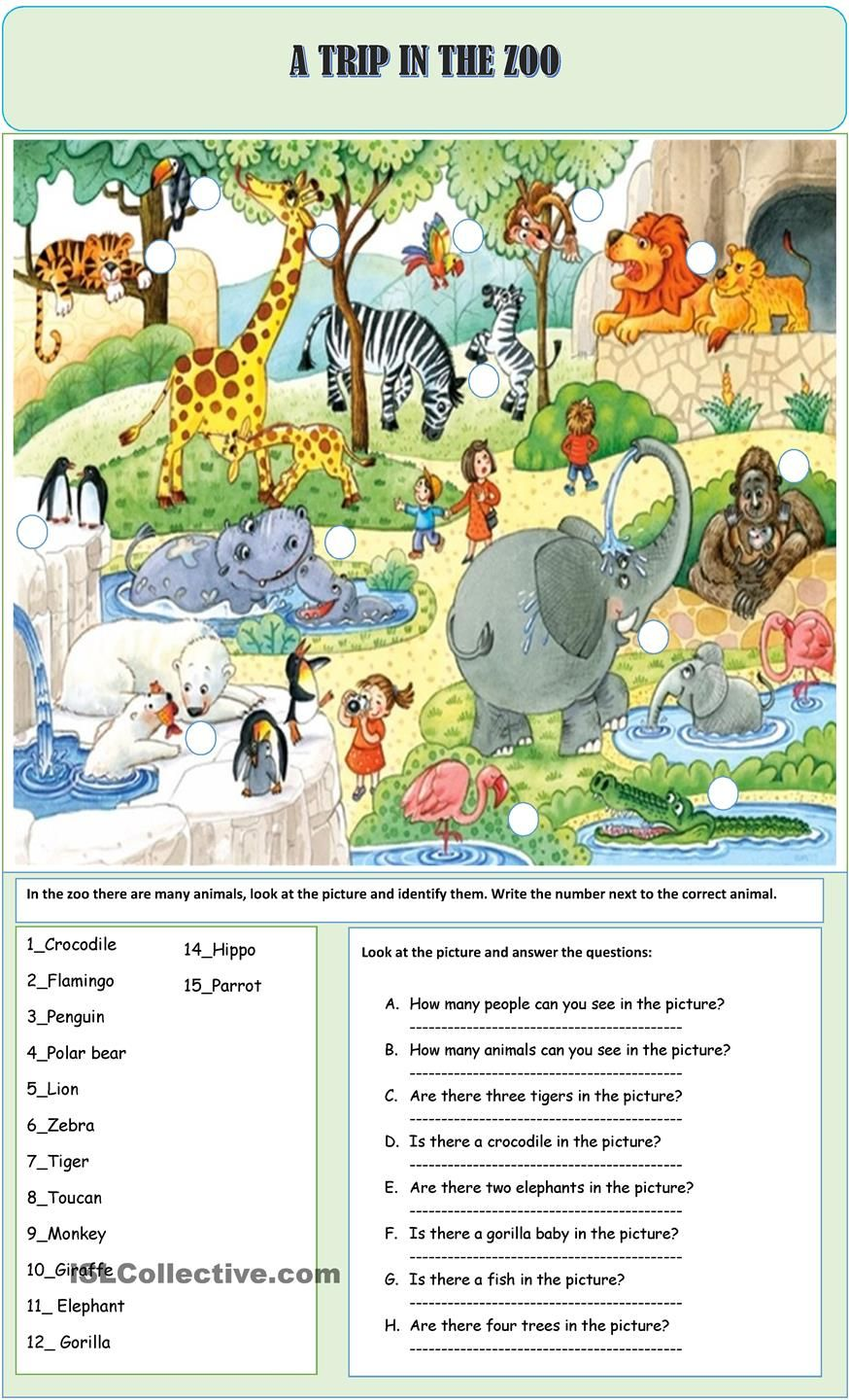 A TRIP IN THE ZOO ESL worksheets of the day Pinterest