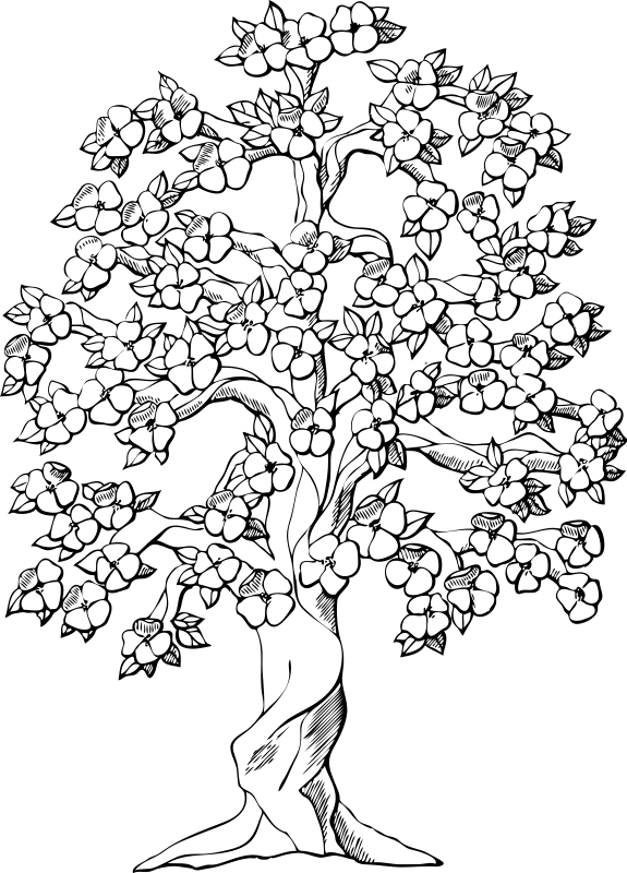 tree coloring pages for adults Google Search Wood