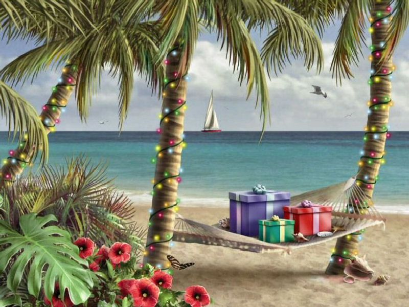 Tropical Christmas Holidays Christmas A Magical Season