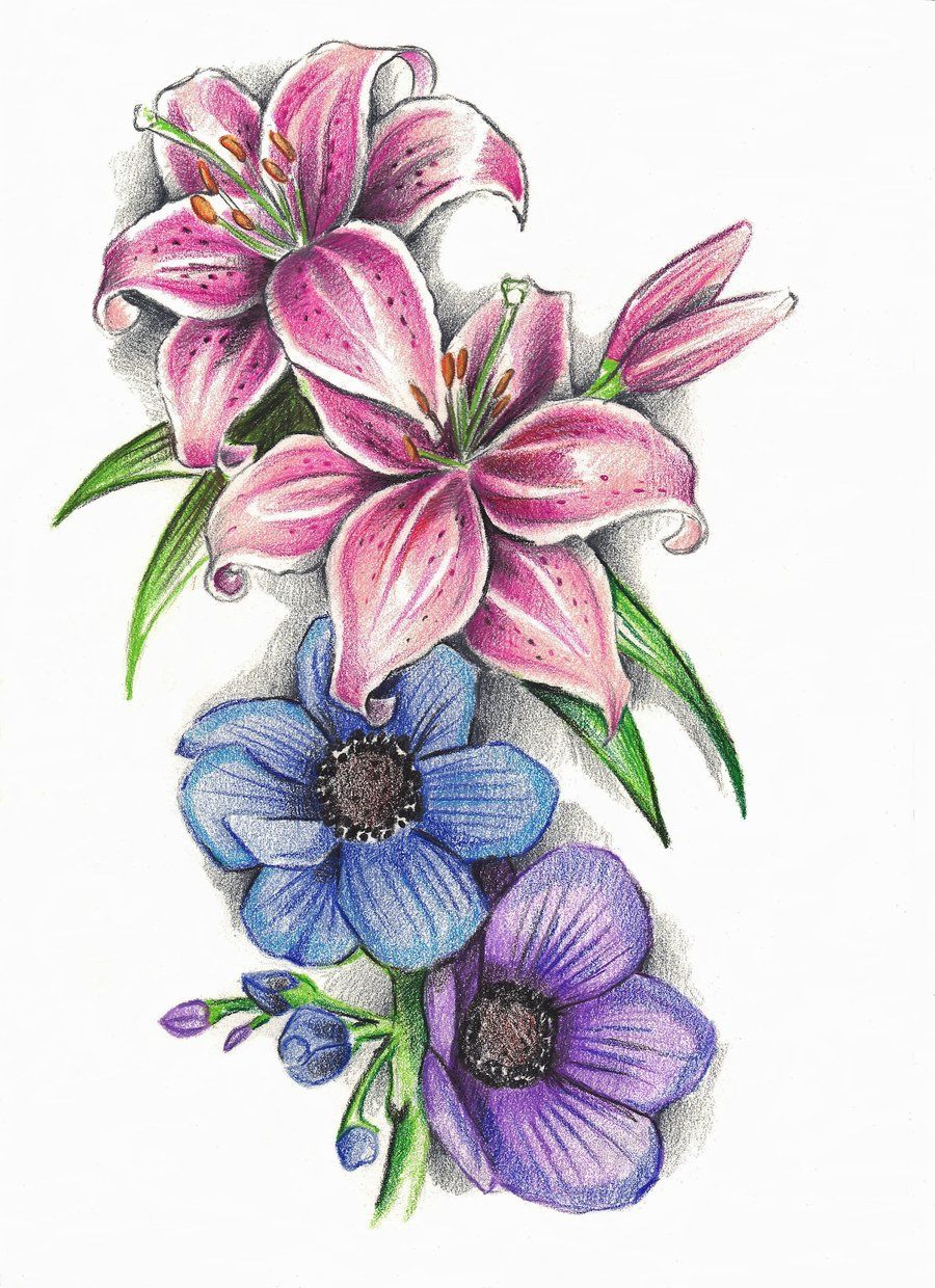 Stargazer Lilly's and Anemone Flowers by phantomphreaq