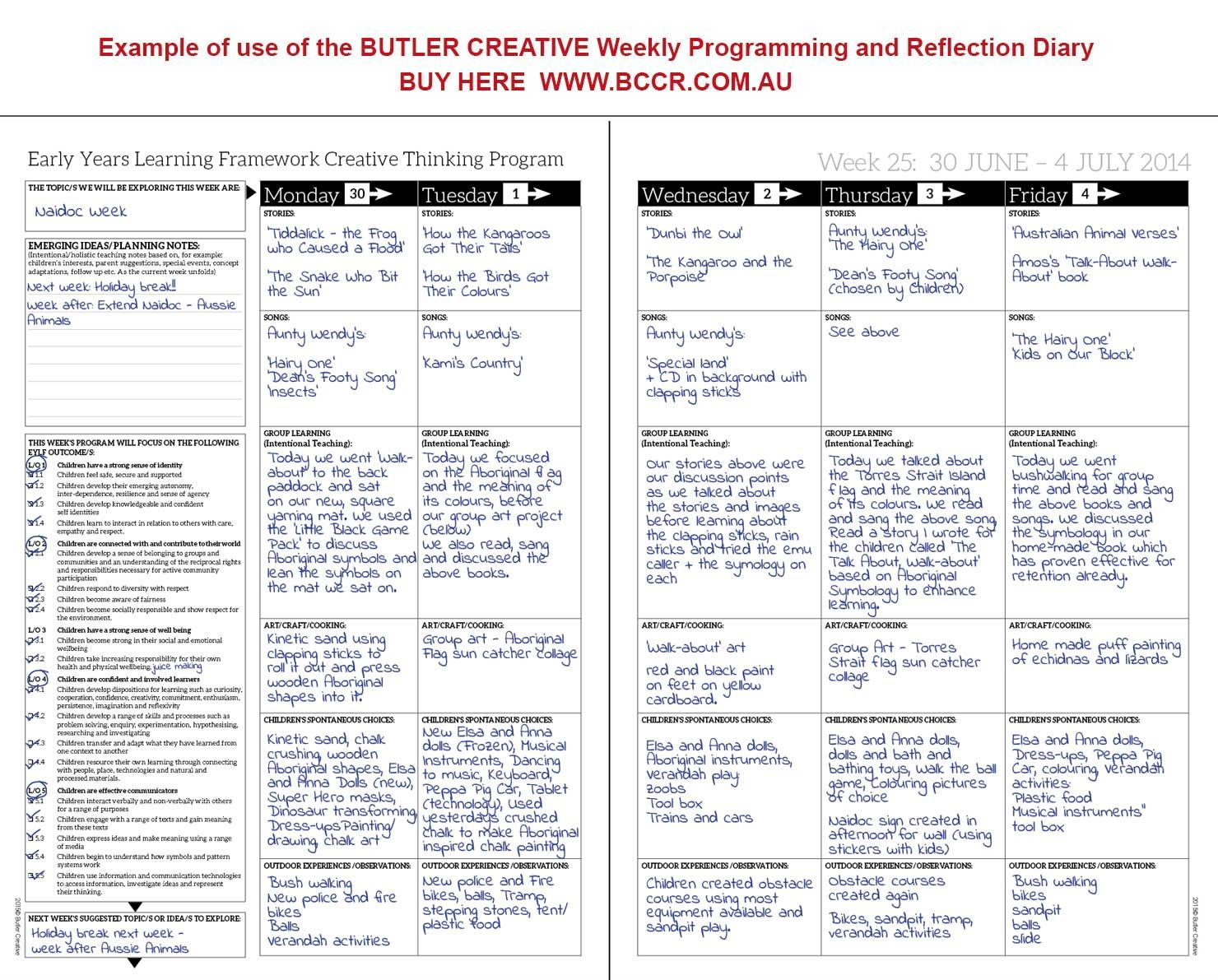 Weekly Programming And Reflection Diary