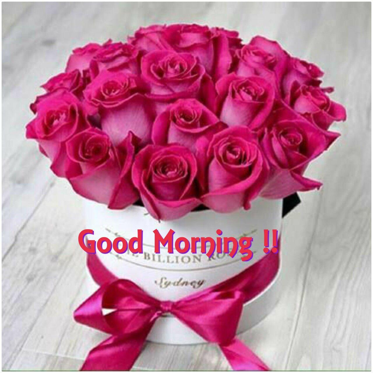 Good morning my beautiful sweetheart I hope you had a good