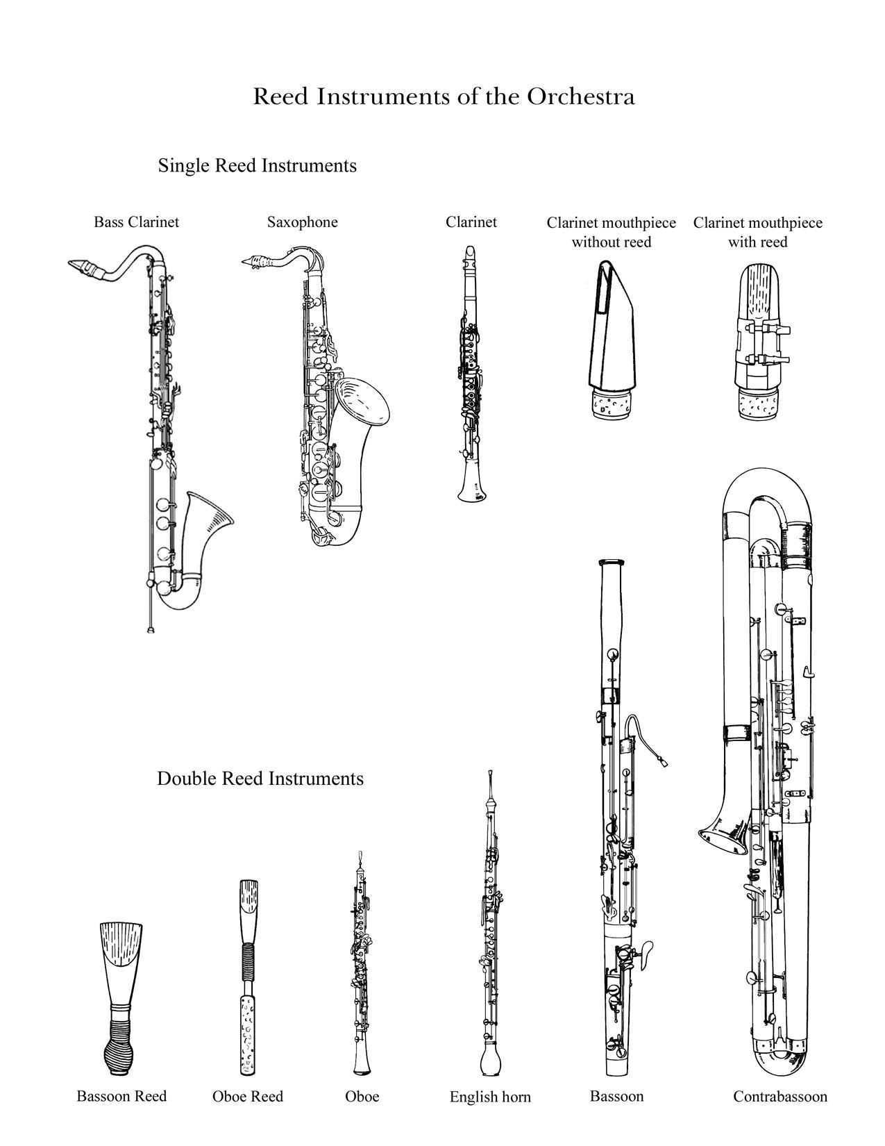 The Reed Family Drawings Of Instruments In The Reed