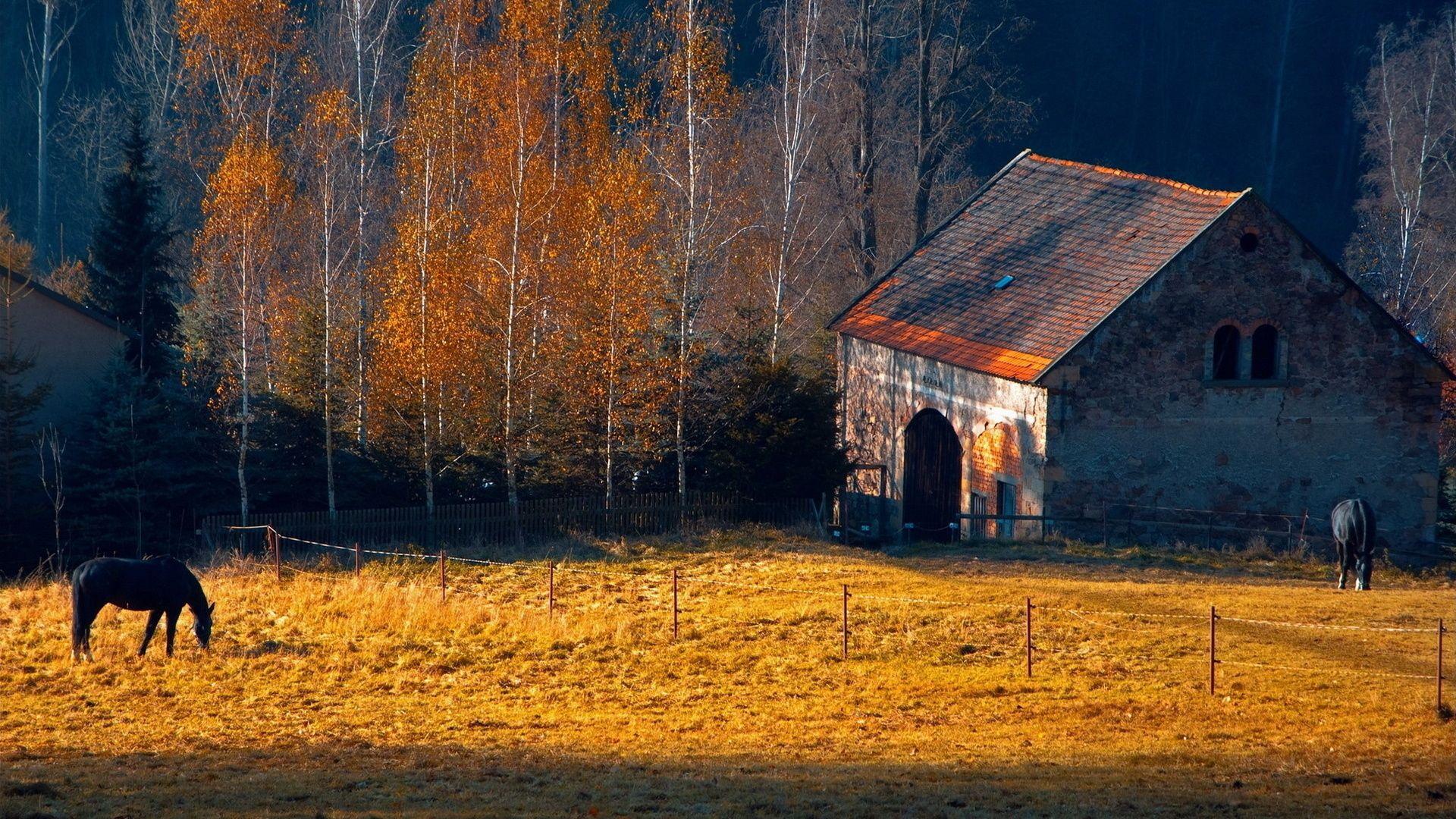 Horses rustic farm barn landscapes buildings autumn fall