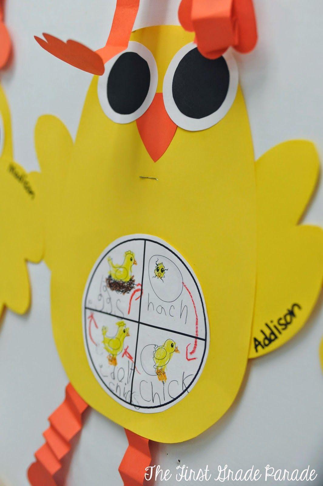The First Grade Parade Chick Craft