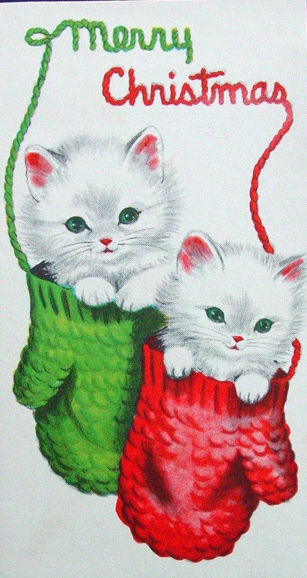 Cute Kittens in Mittens Christmas Winter Animals
