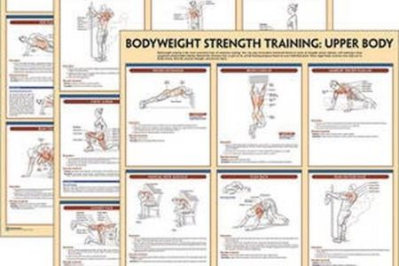 Best Free Fillable Forms Strength Training Anatomy Pdf Free