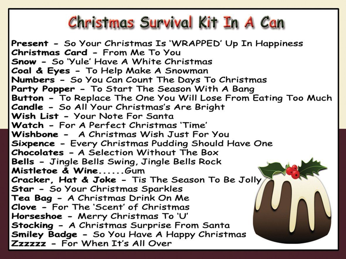 Humorous Christmas Survival Kit In A Can. Novelty Fun Xmas