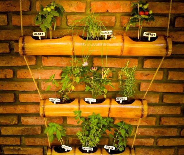Ideas Para Decorar Con Bambu Bamboo Ideasbamboo Gardenbamboo