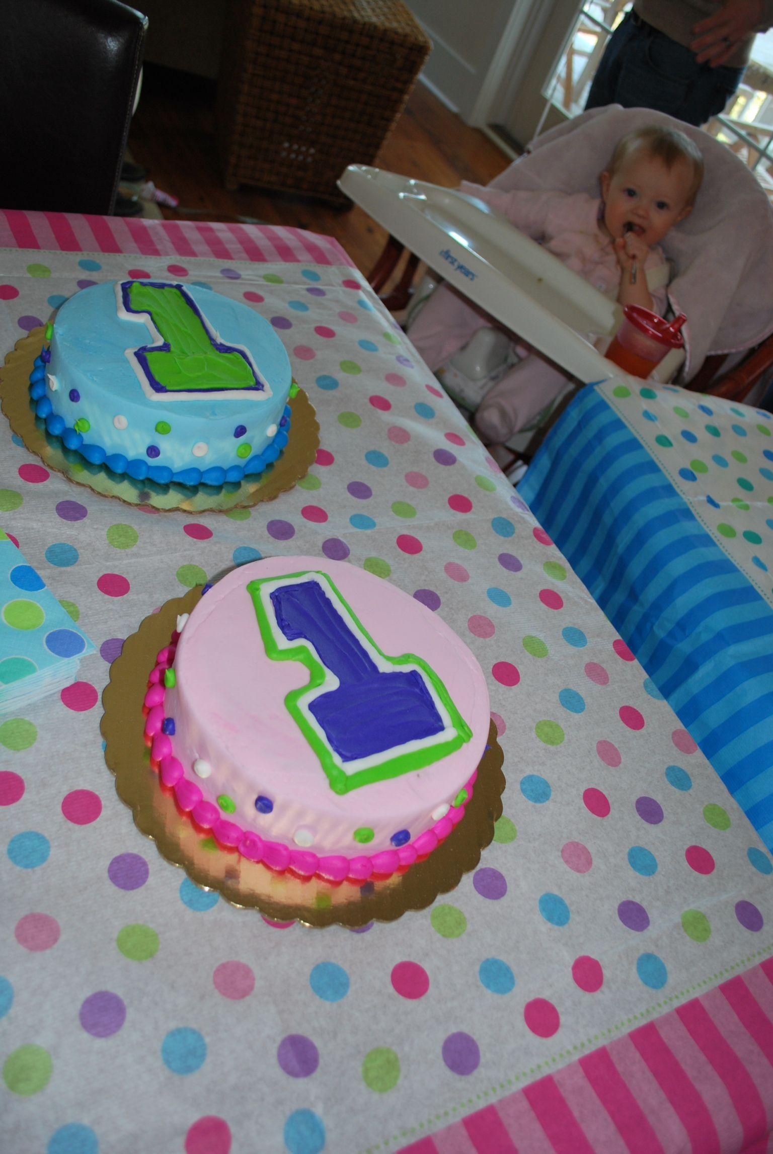 Boy Girl Twins Smash Cakes