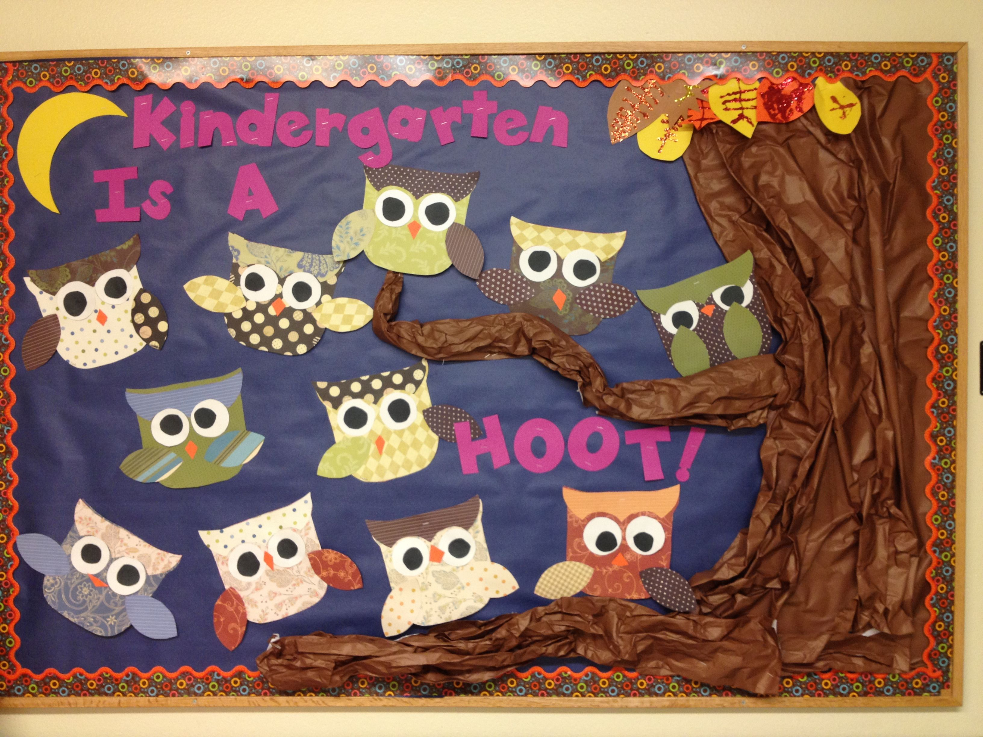 Fall/beginning of year bulletin board. Kids make owls out
