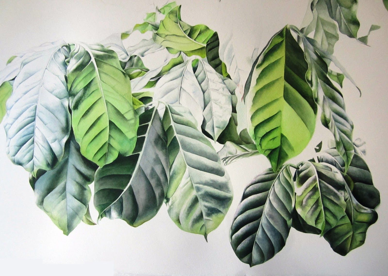 Inky Leaves Botanical Illustration in East London