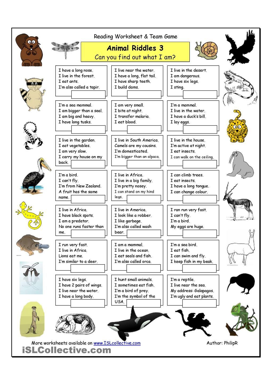 Animal Riddles 3 (Hard) Riddles Pinterest Animal