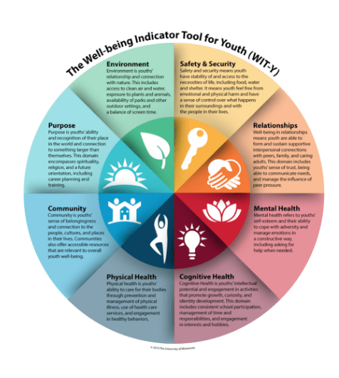 Wellbeing Indicator Tool for Youth (WITY)