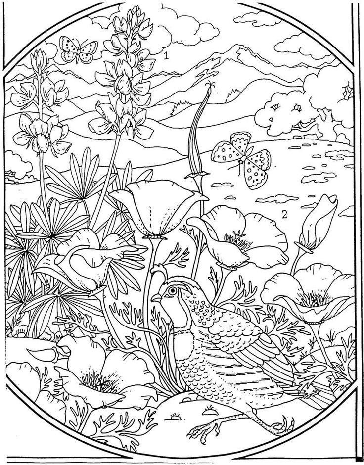 Flowers Coloring page Coloring Outside the Lines