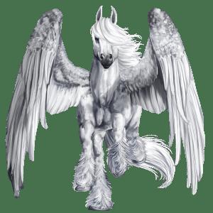 Pegasus Purebred Spanish Horse Light Gray Drawings