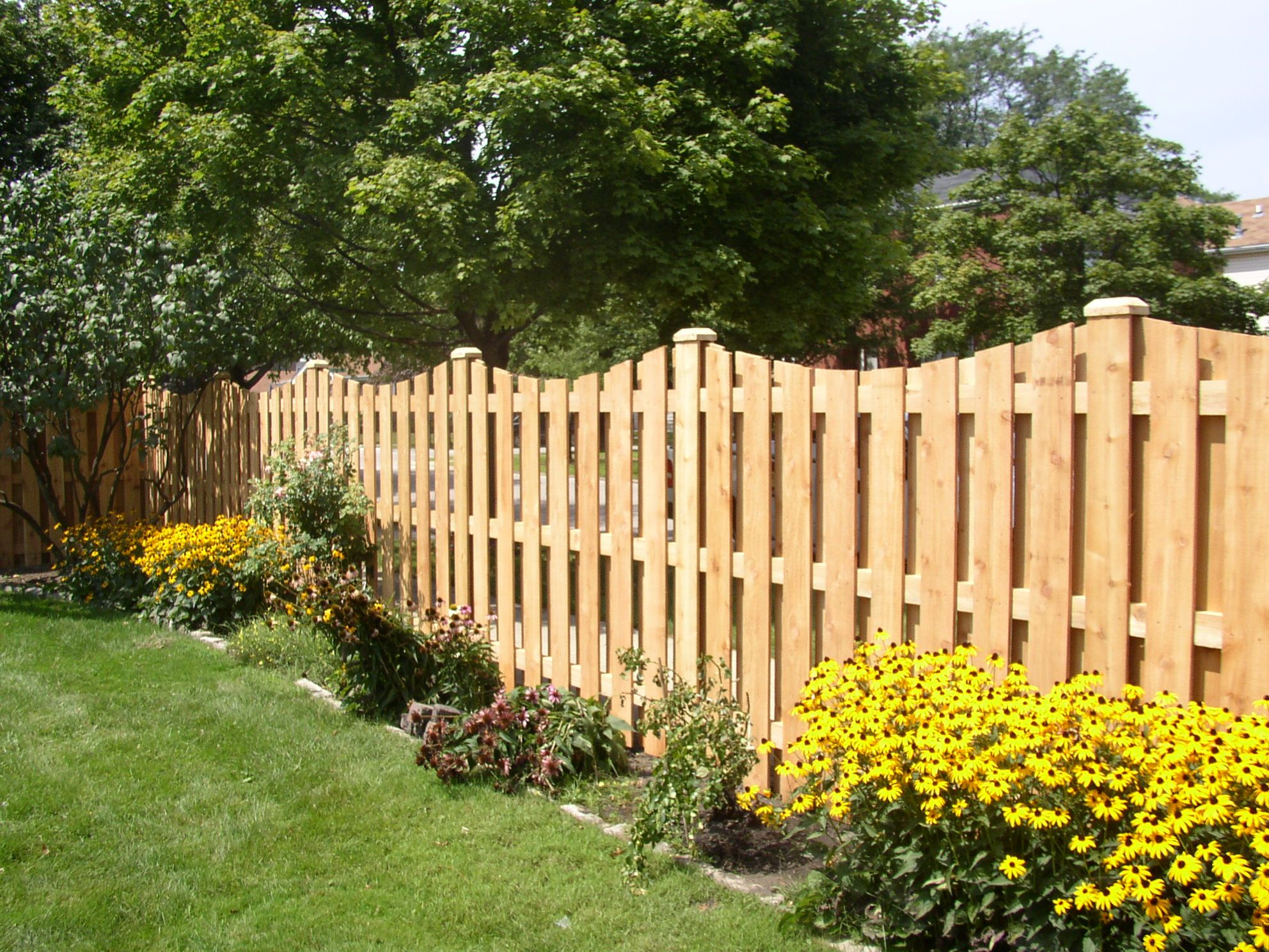 Scalloped Cedar Privacy Fence