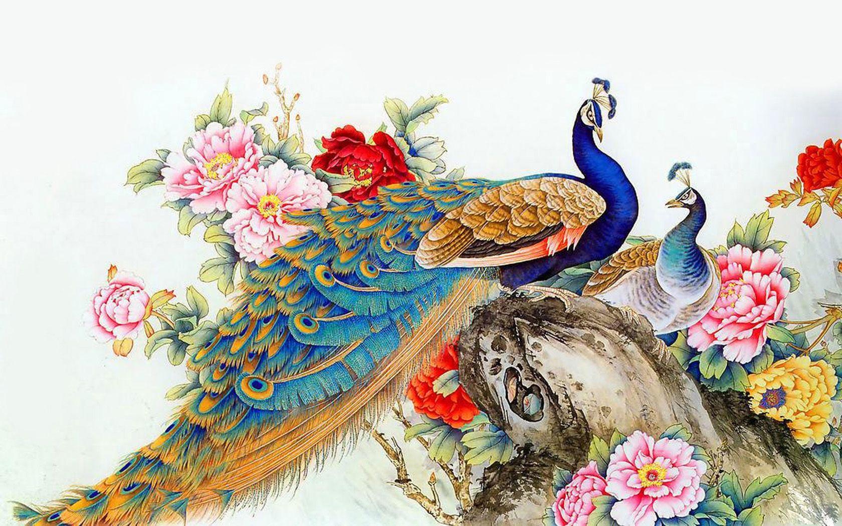Peacock wallpaper widescreen 123 Pinterest Peacocks