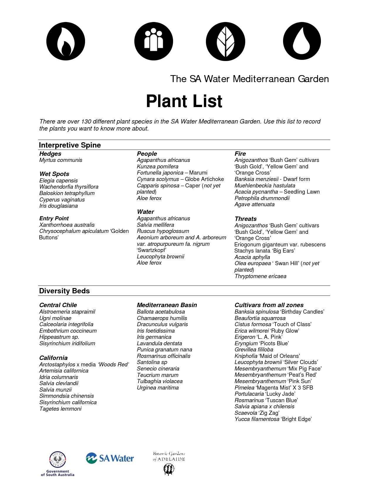 Mediterranean Garden Plant list Mediterranean Tropical