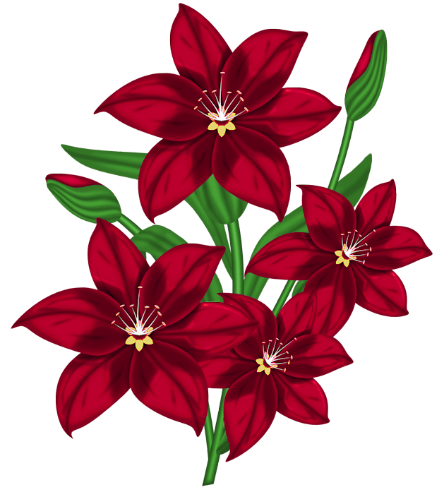 Nice Red PNG Flower Clipart Flowers Pinterest Flower