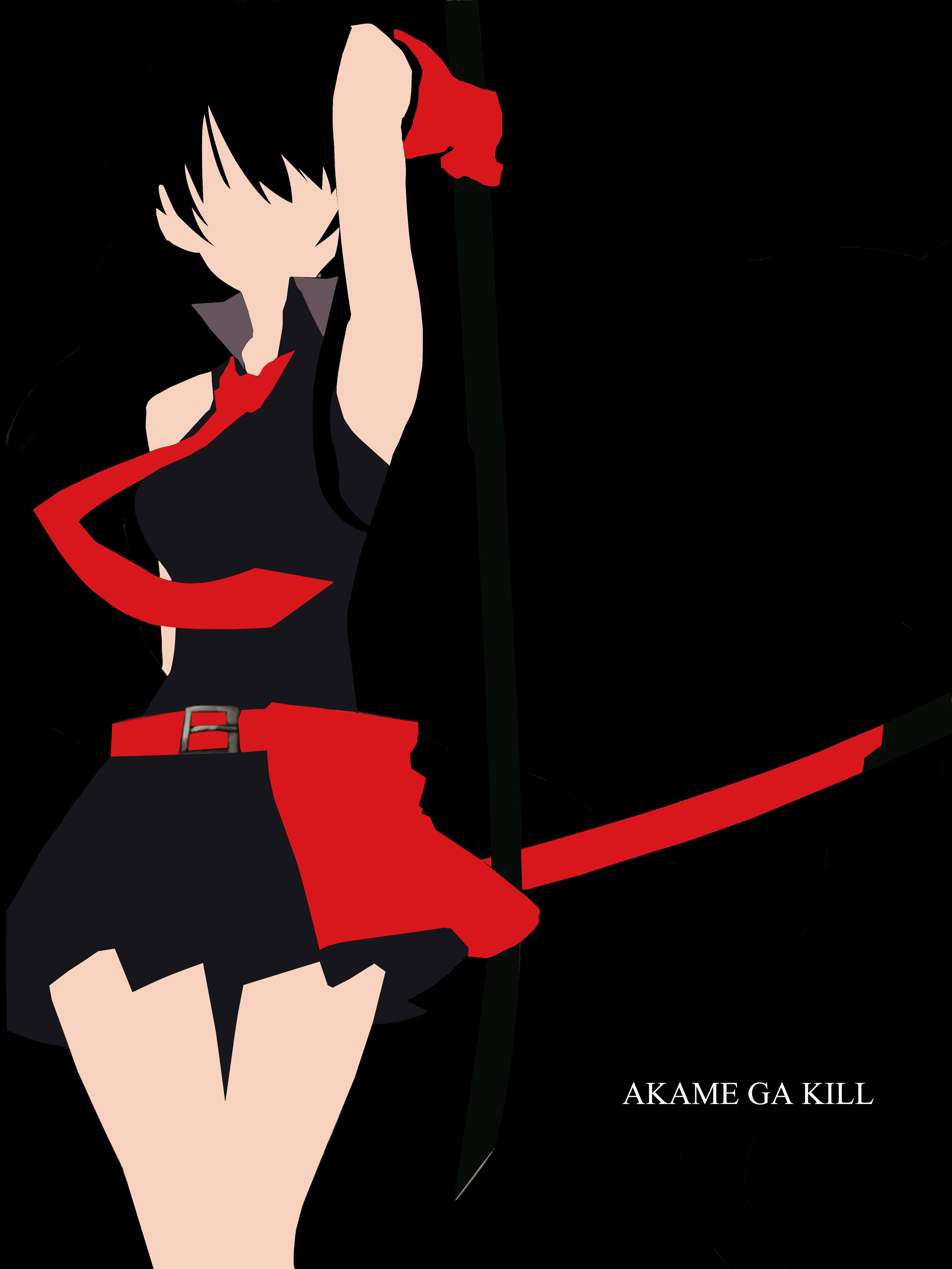 Akame Akame ga Kill A vector art by your's truly. A