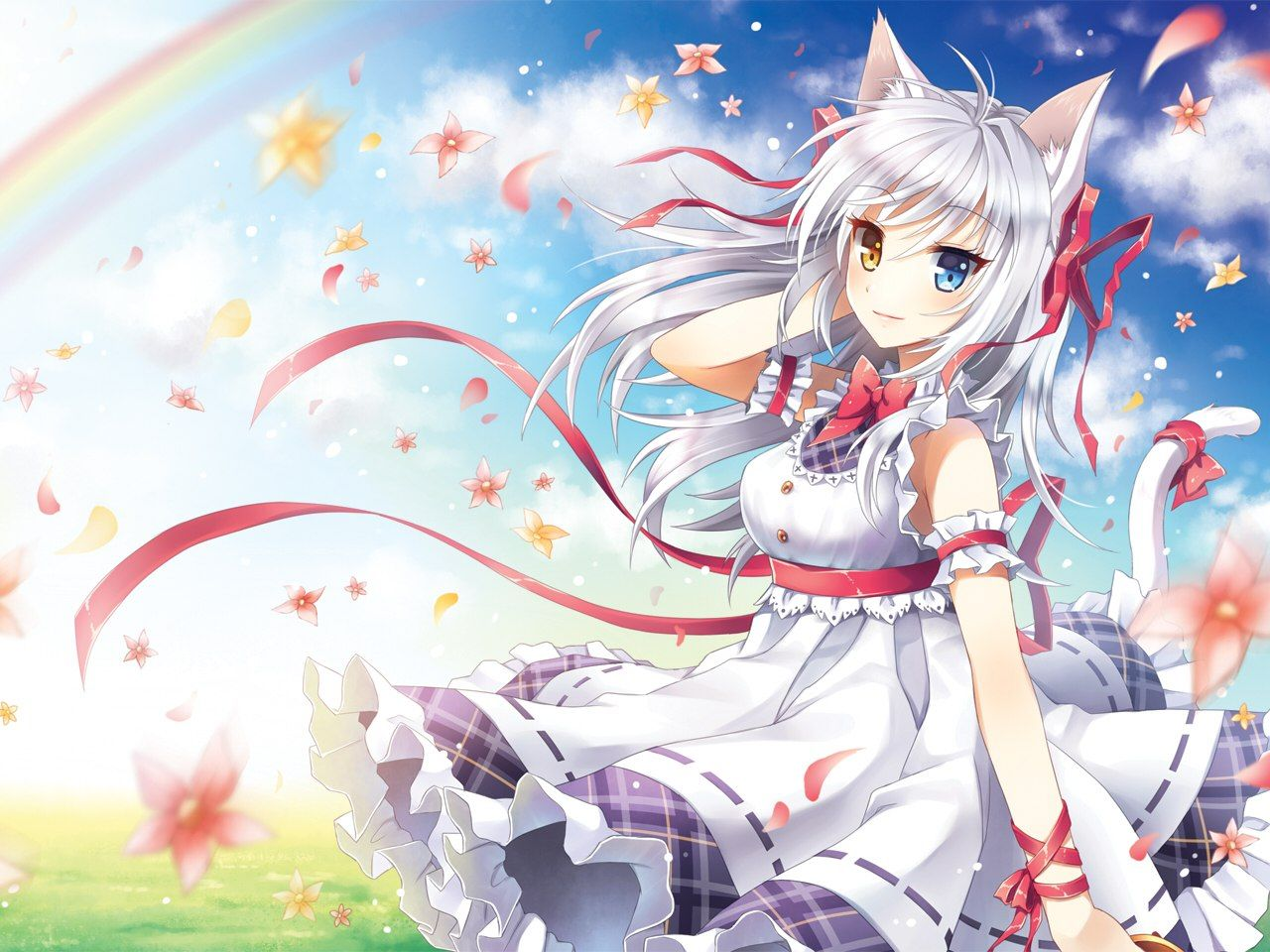 Anime Cat Girl with White Hair Wallpaper Stuff to Buy