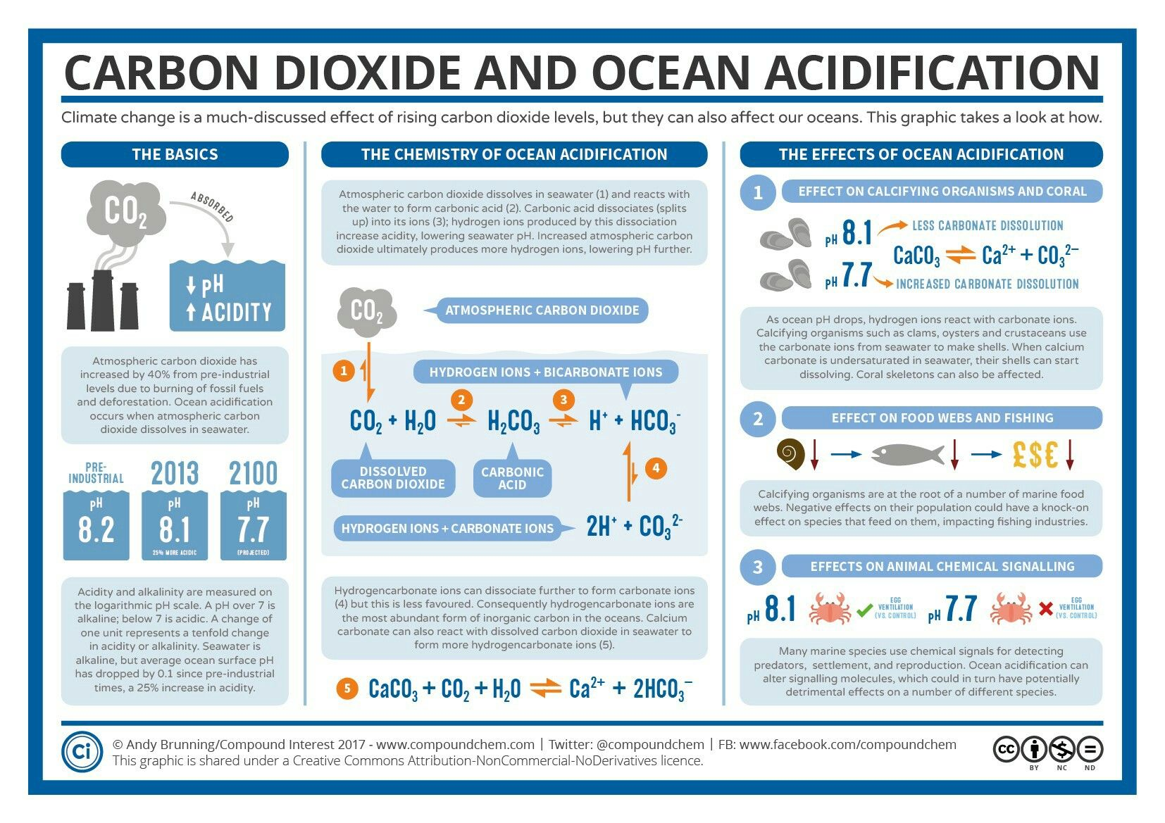 Carbon Dioxide And Ocean Acidification
