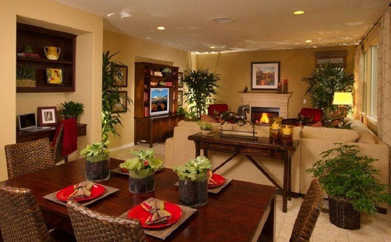 Small Kitchen Living Room Combo Ideas Novocom Top