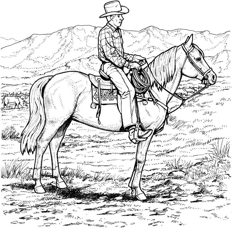 cowboys coloring pages and coloring on pinterest