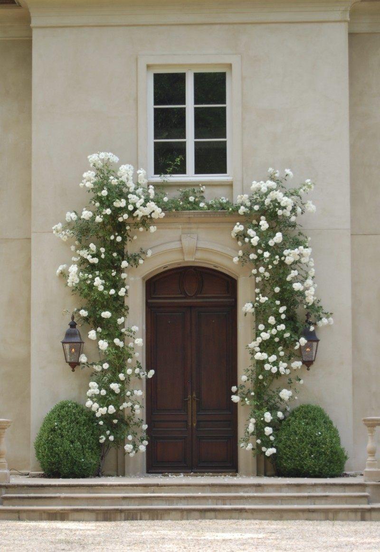 White Dawn Climbing Rose garden Pinterest Rose