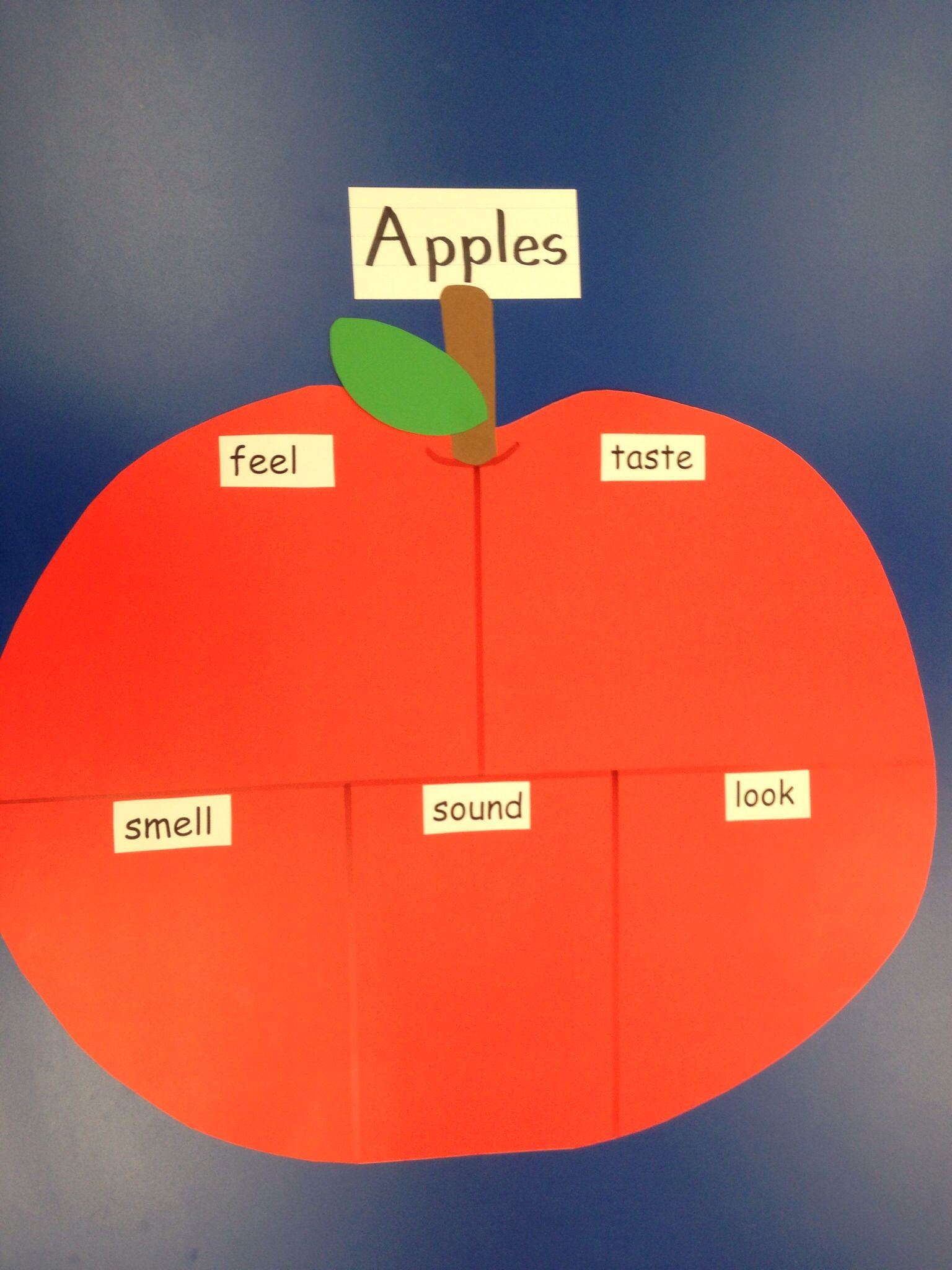 Apple Five Senses Chart After Adding Descriptive Words Use The Title Headings And