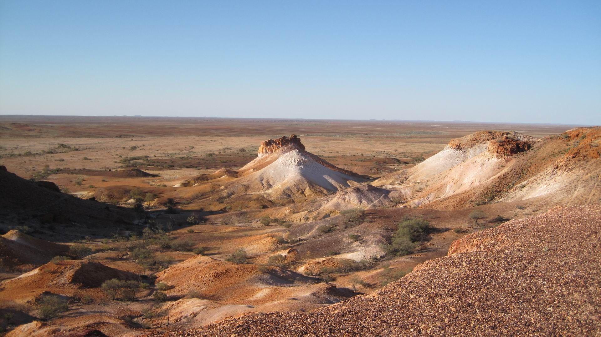 Tanami Desert Australia Desert Oasis Pinterest