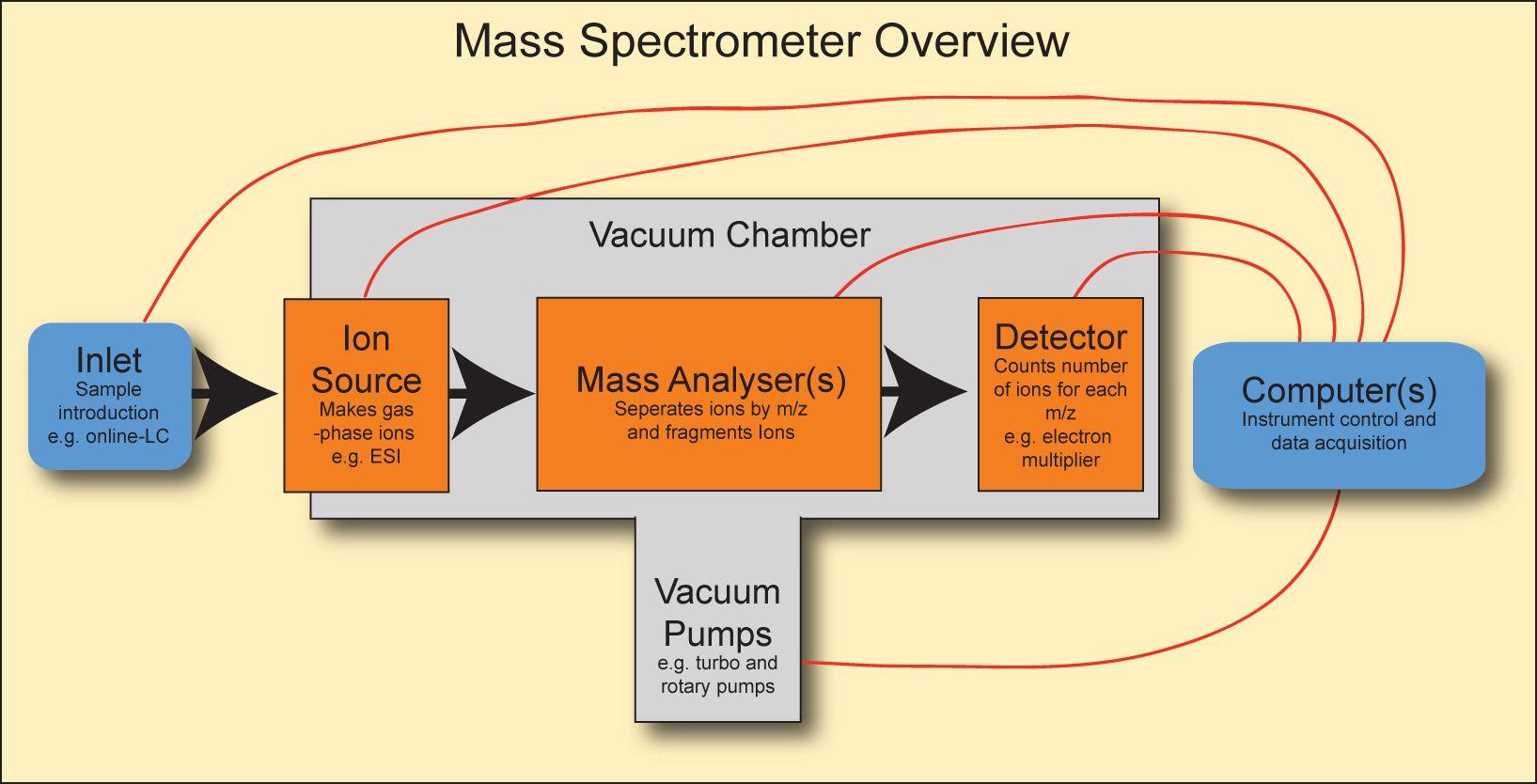 Flow Chart of Mass Spectrometry Mass Spectrometry