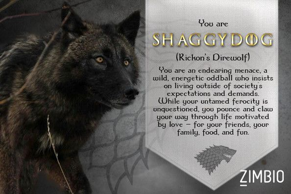Shaggy dog game of thrones