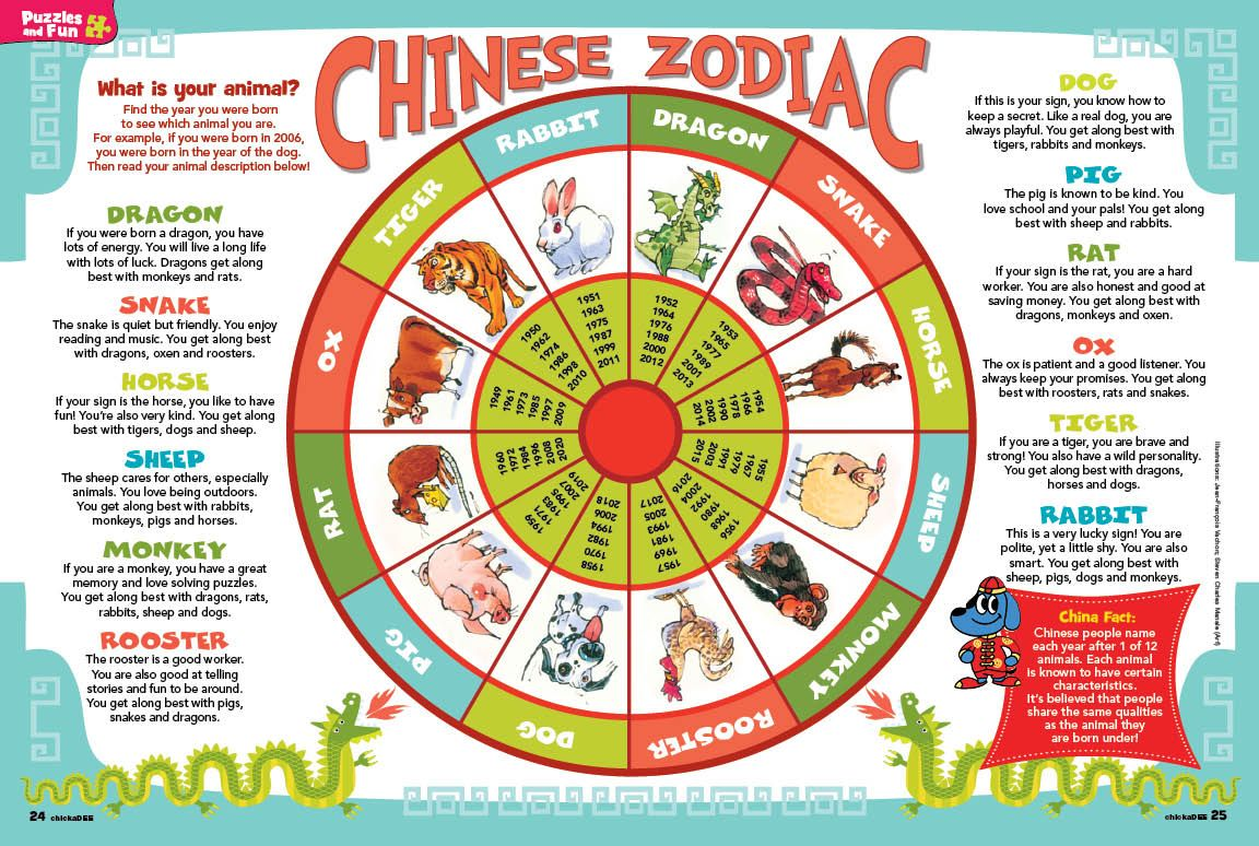 Chinese New Year Animals Meaning Happy Year of the Horse