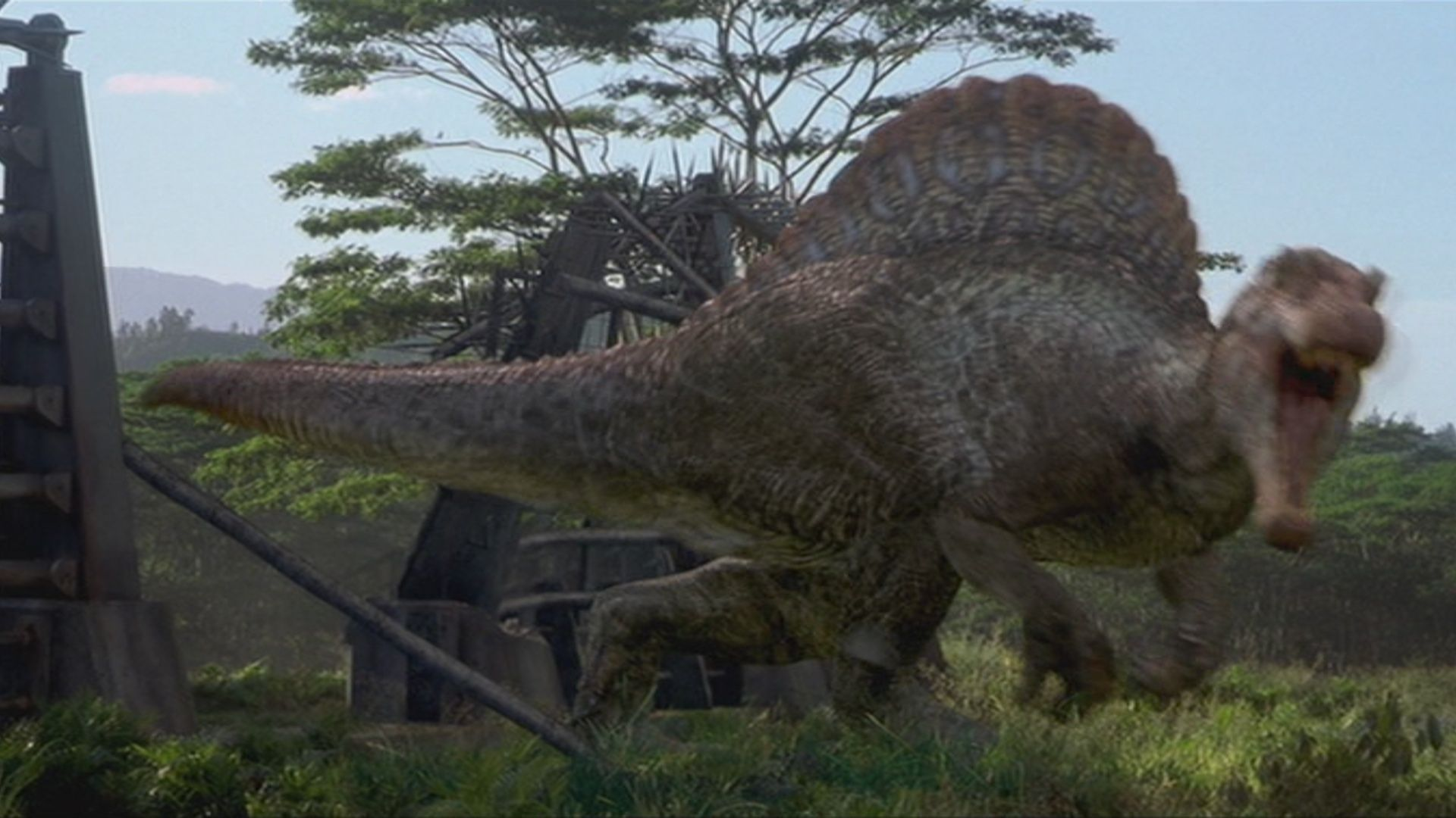 Image for Types Of Dinosaurs In Jurassic Park 3 Animals