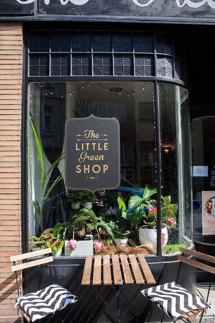 The Little Green Shop Le Concept Store Végétal Concept