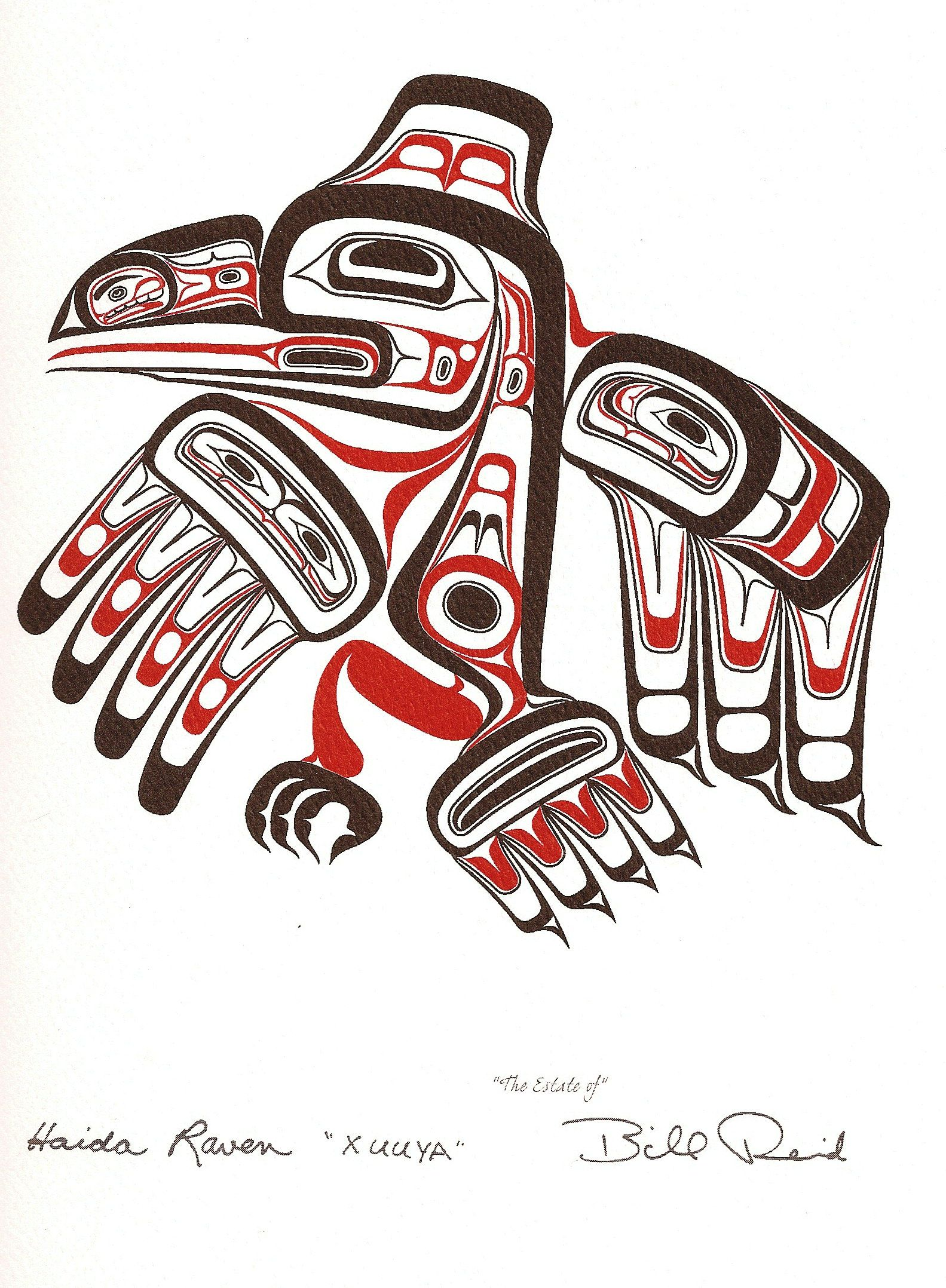 Haida Raven