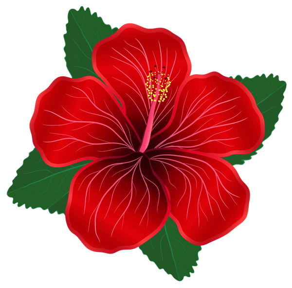 Red Flower PNG Clipart Image *♣️Flower Clipart 1