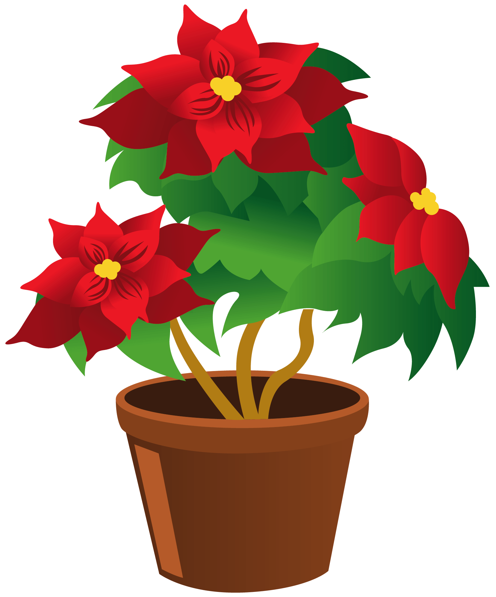 Poinsettia_Pot_PNG_Clipart ° my garden valley