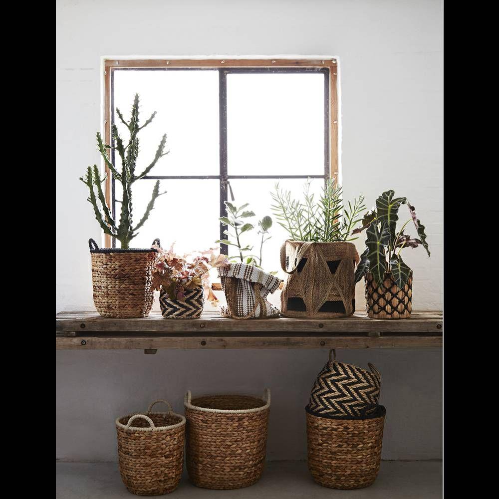 une decoration vegetale via des plantes accumulees dans des paniers