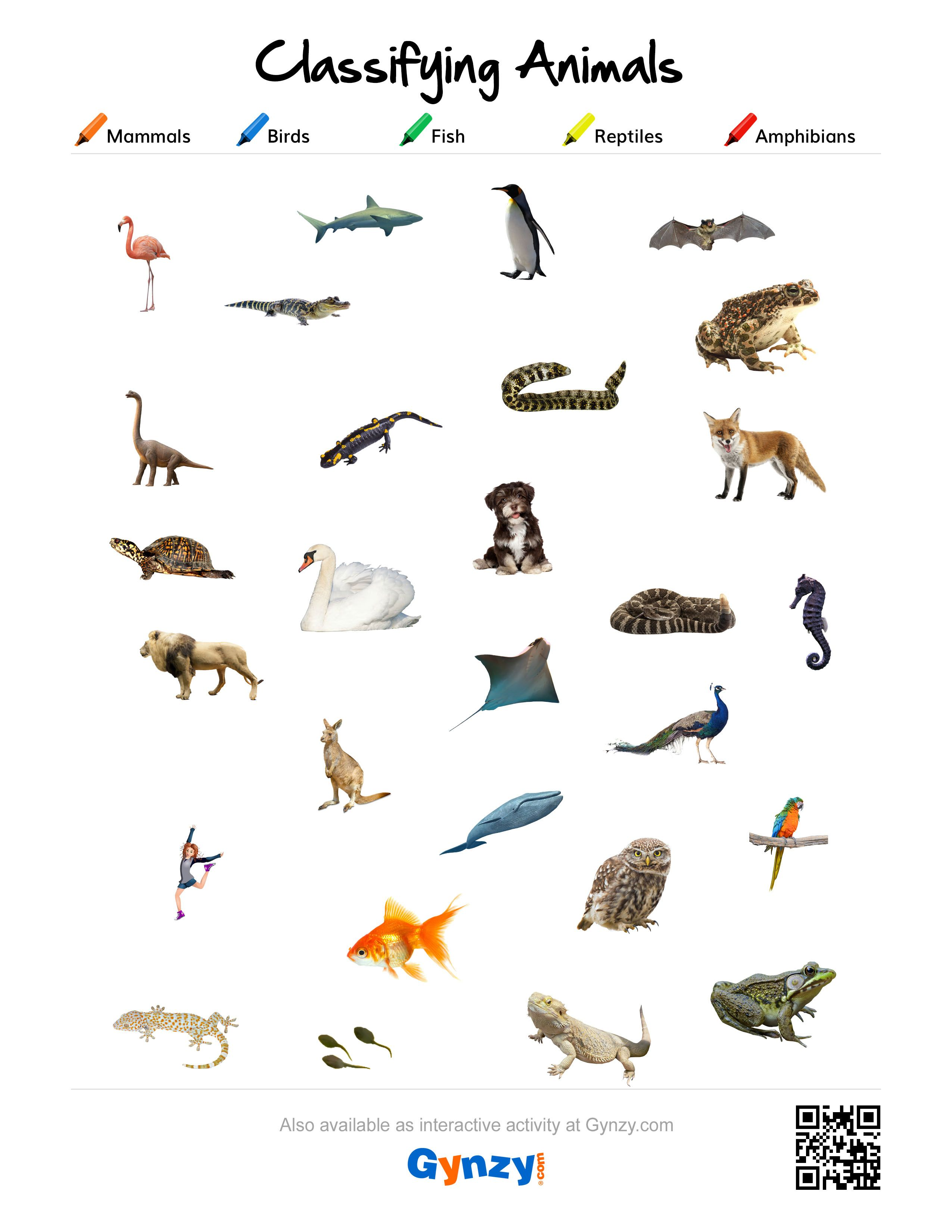 Life Reptiles And Amphibians Worksheet Critter Crossword Reptiles And Amphibians Worksheet