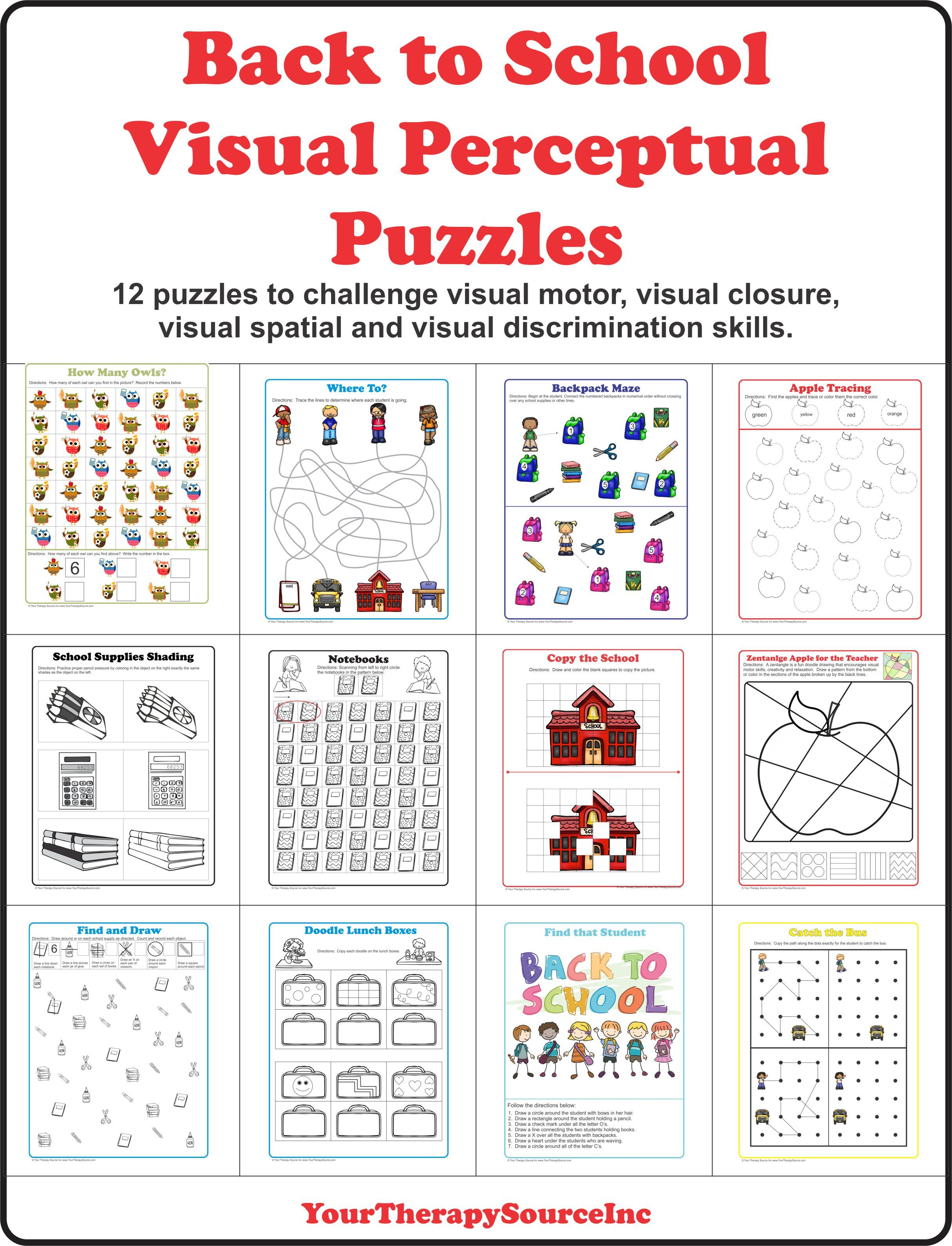 12 Visual Motor Visual Spatial Visual Closure And Visual Perceptual Challenges With A Back To