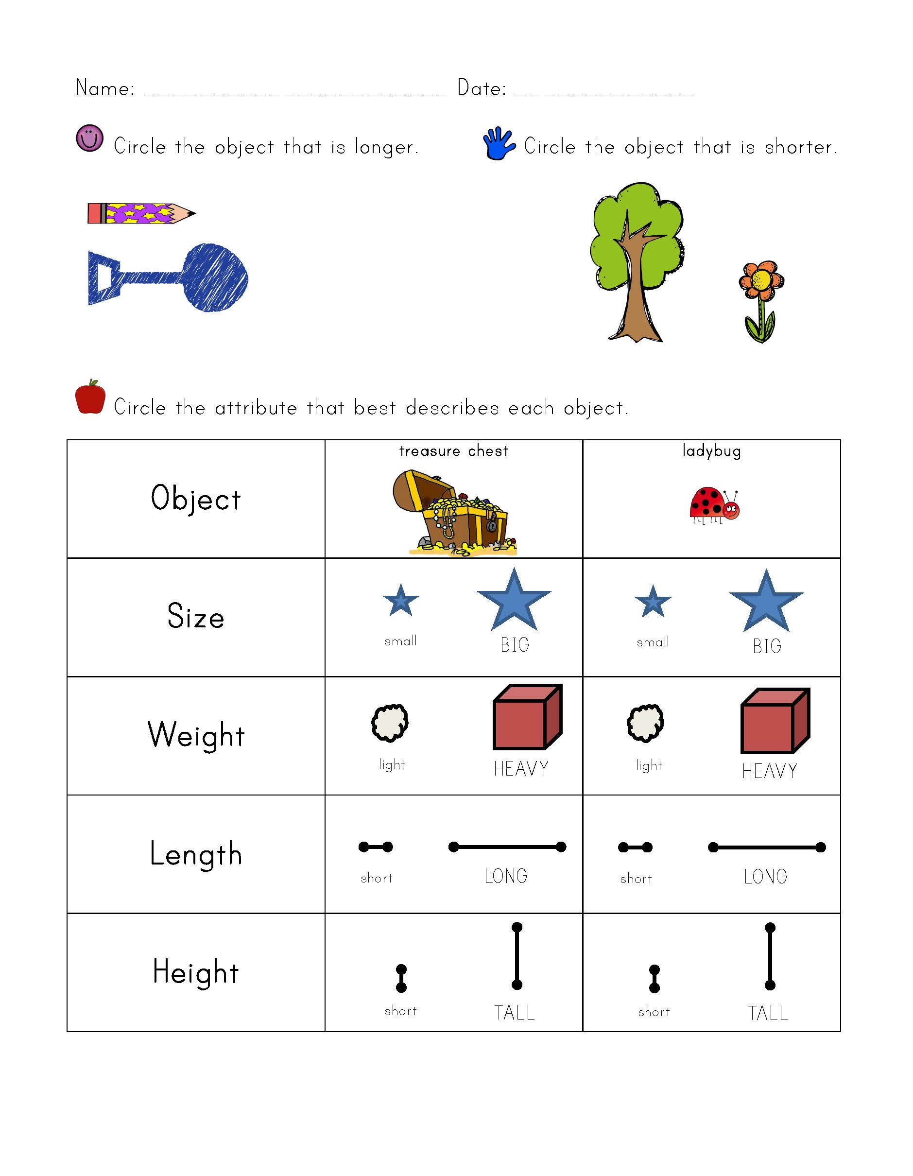 Attribute Worksheet 1st Grade