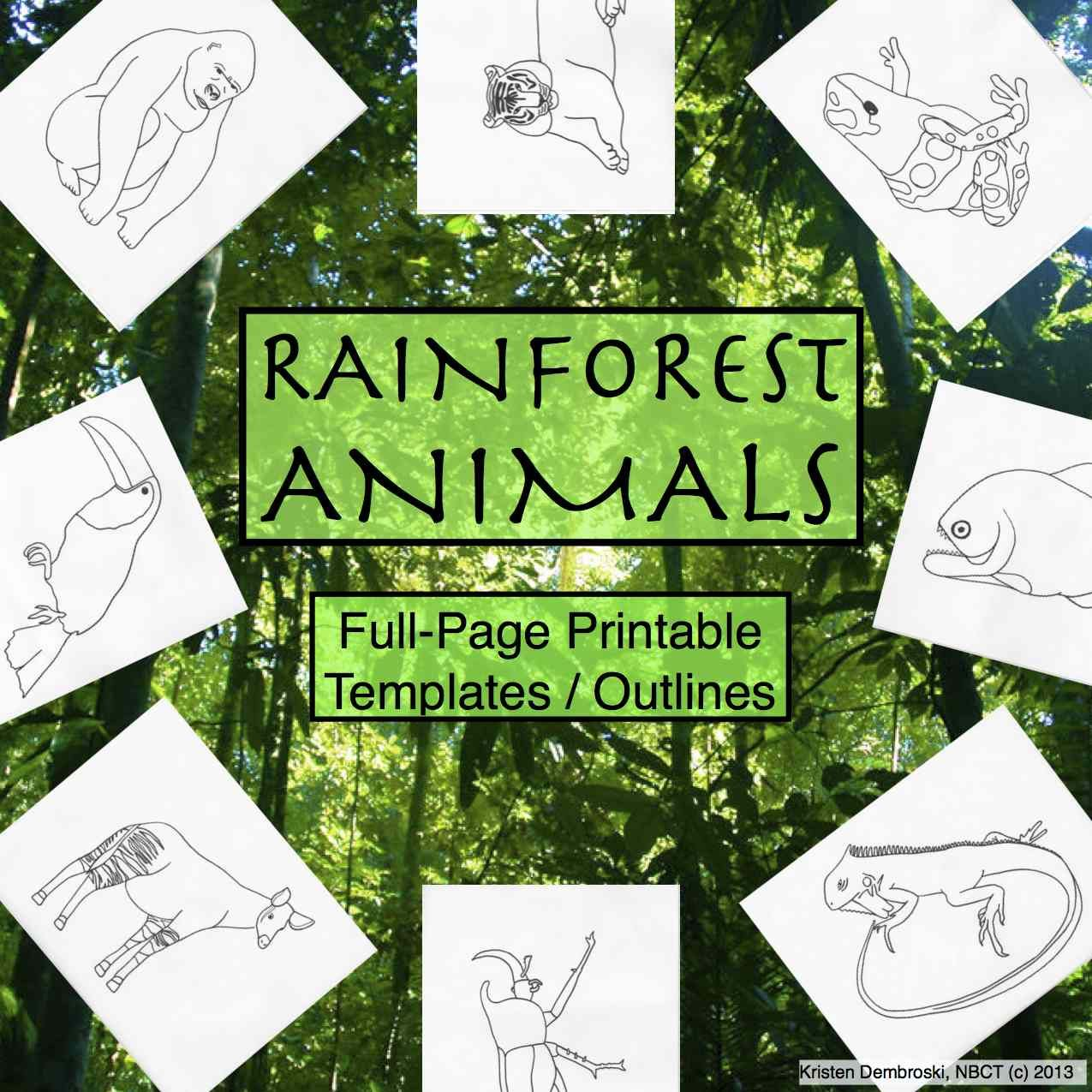 This Is A Pack Of 30 Blank Hand Drawn Rainforest Animals They Are Full Page Printable