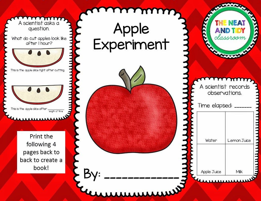 Apple Browning Experiment 1st Grade