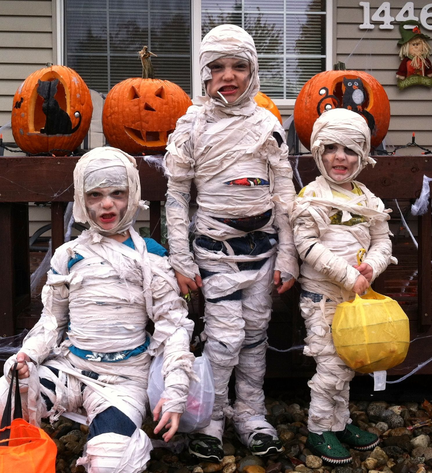 Homemade Mummy costumes ) all I did was go to walmart and