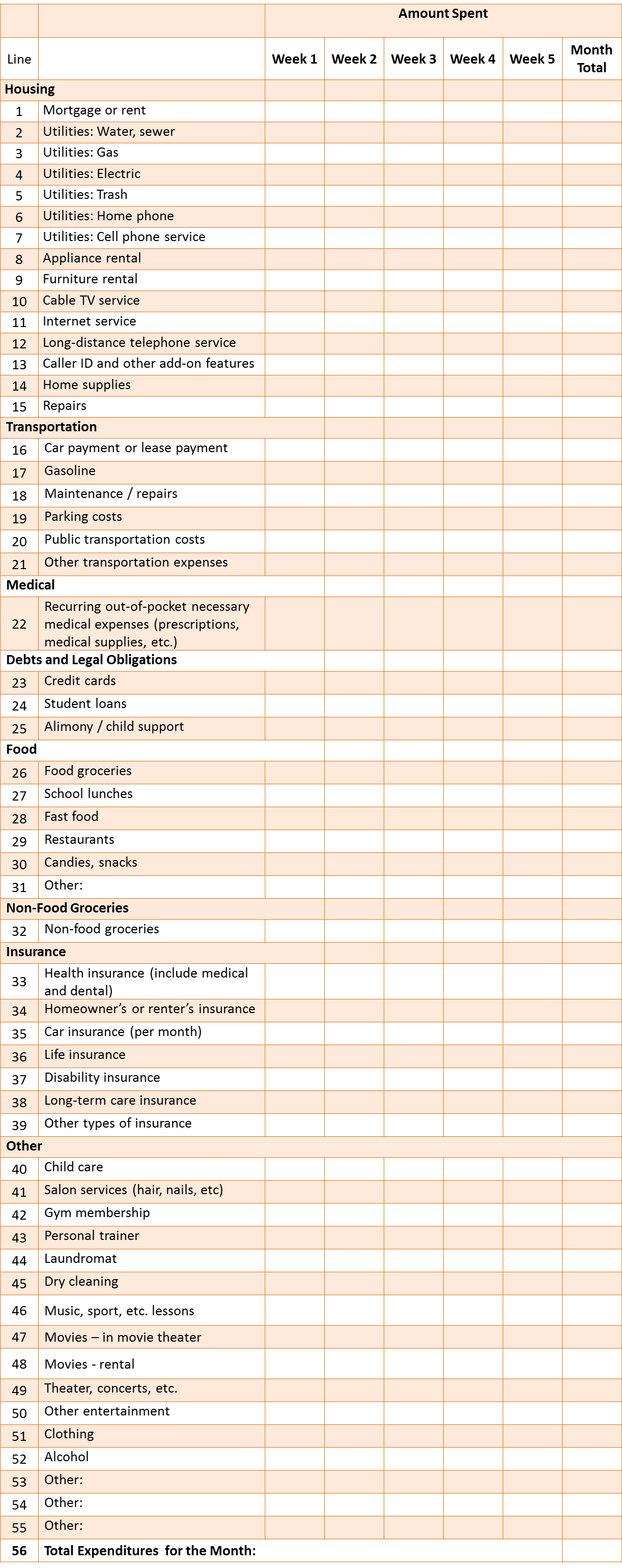 Monthly Expense Sheet